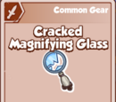 Cracked Magnifying Glass