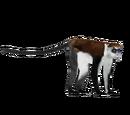 Mona Monkey (Zoo Tycooner FR)