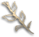 Друид (иконка).png