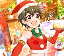 【クリスマス'15】昴