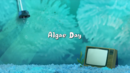 Algae Day 001.png