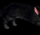 Anglertooth