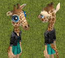 Gina the Giraffe