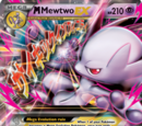 Hot and Cold Frostfire/M Mewtwo EX Deck