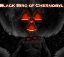 The Blackbird of Chernobyl