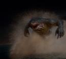 Imágenes de King Shark