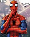 Peter Parker (Earth-TRN461) 020.jpg