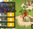 Chili Pepper (Minions Paradise)