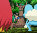 XY037: Forging Forest Friendships!