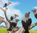 Male Vulture/Gallery/The Search for Utamu