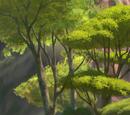 Hakuna Matata Falls/Gallery/The Search for Utamu!