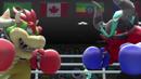 Bowser Zavok Boxing.png