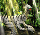 Zebra Saurian