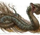 Schlangendrachen