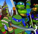 Trans-Dimensional Turtles