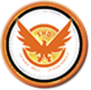Tom Clancy's The Division Badge 2.png