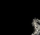 Botswana at the Commonwealth Games