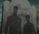 Peter Parker (Earth-TRN457)