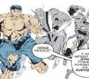 Avengers (Earth-9966)
