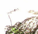 CODE: Veronica locations