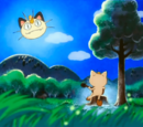 Meowth's Song