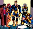 X-Men (Earth-TRN566) from The Adventures of the X-Men Vol 1 5.jpg