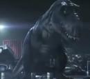 Sr. Rex
