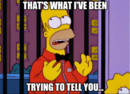 Homer Simpson - That's what I've been trying to tell you.png
