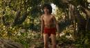 Jungle Book 2016 122.png