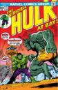 Incredible Hulk Vol 1 171.jpg