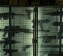 The Punisher Weapons