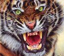 AiM 011 - Die Sache mit dem Tiger