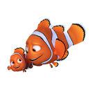 Marlin & Nemo FD.jpg