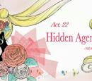 Act 22. Hidden Agenda, Nemisis