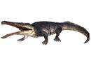 Prionosuchus.jpg