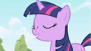 --My name is Twilight Sparkle-- S1E01.png