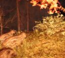 Тапир (Far Cry Primal)