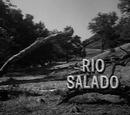 Rio Salado