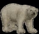 Polar Bear (Aurora Designs)