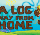 A Log Way From Home
