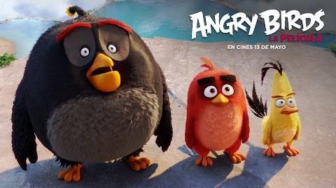 ANGRY BIRDS LA PELíCULA. Llegan los pájaros más divertidos. En cines 13 de mayo