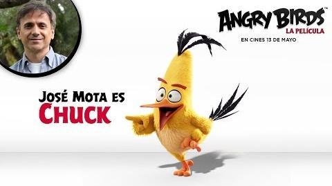 ANGRY BIRDS LA PELÍCULA. José Mota presenta a Chuck. En cines 13 de mayo