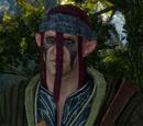 Merchant (Scoia'tael)