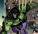 Bruce Banner (Terra-26111)