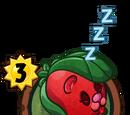 Hibernating Beary