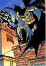 Batman 0693.jpg