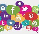 Bleubird/A Wikia e as Redes Sociais