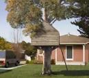 Casa da Árvore da Molly