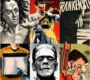 Frankenstein: A Cultural History by Susan Tyler Hitchcock (2007)