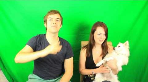 BEHIND THE SCENES OF JACKASK (tons of hot girls)